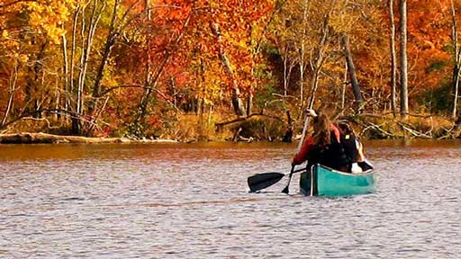 Fall-Canoists-512