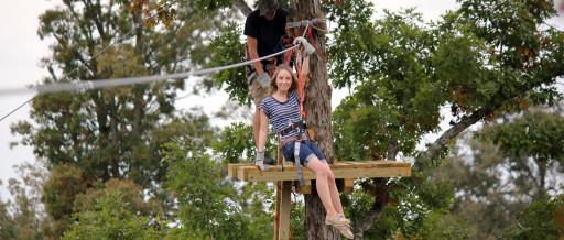 Treetop Zoofari