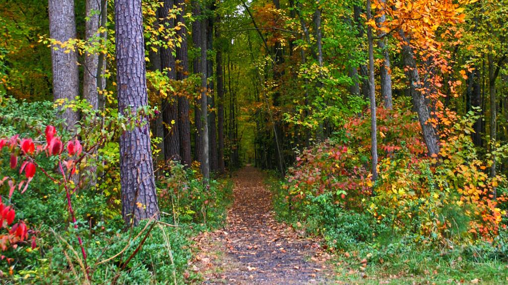 midlothian-mines-trail